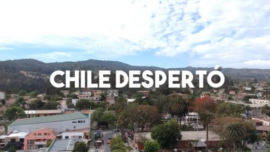 Chile Despertó Apoya tu Comercio local!